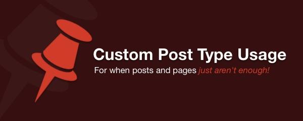 custom-post-type-usage-image